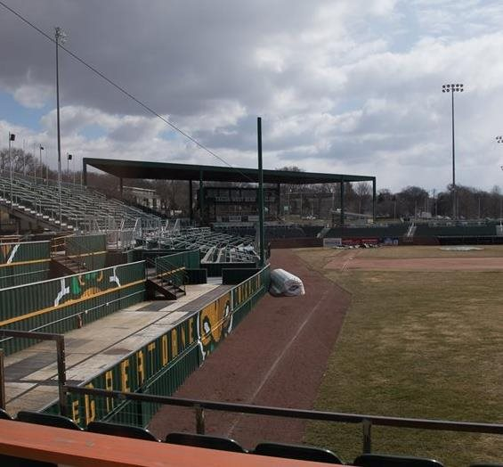 Mallards Score with Energy Efficiency