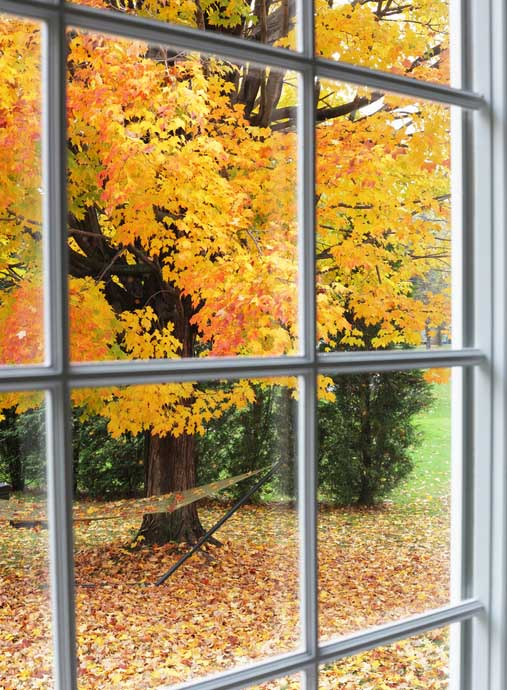 Fall into Energy Savings